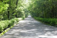 A road in Atul