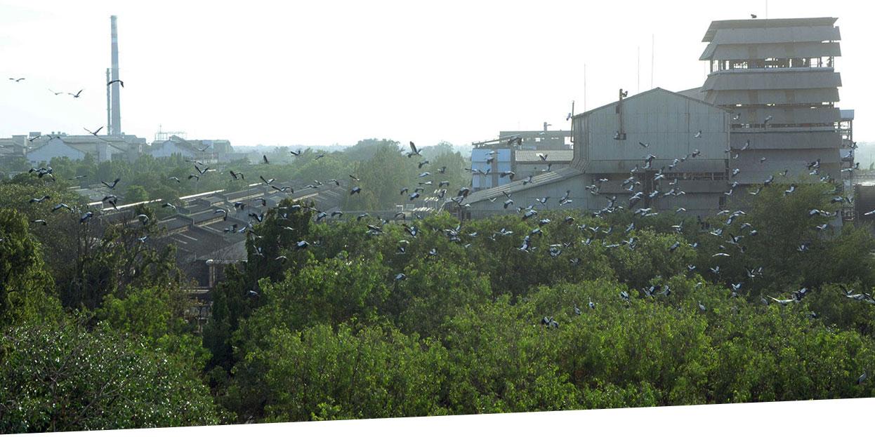 Home | Atul